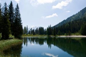 Rifugio Nambino - I dintorni