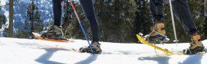 Rifugio Nambino | Attività in inverno